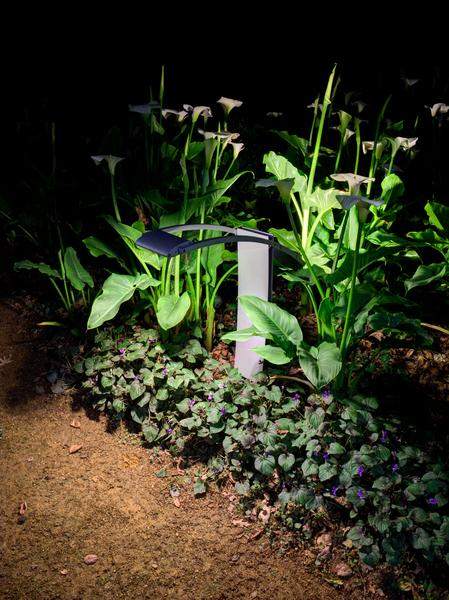 LINDSLEY LIGHTING – MANTIS PATHWAY